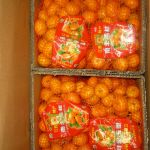 poranbazar-orange-02