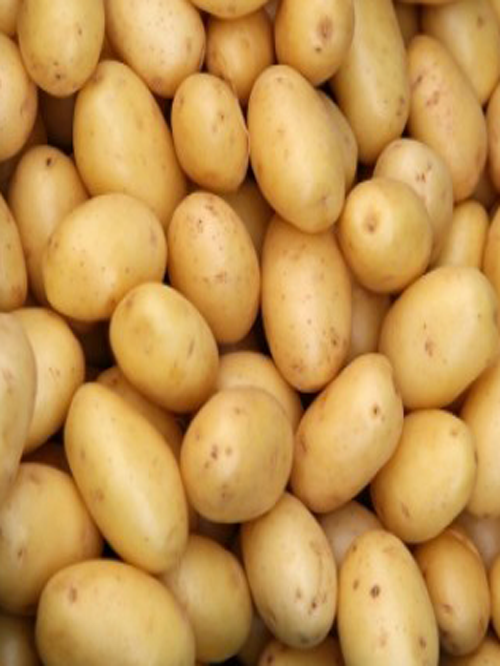 poranbazar-potato-gaam-02