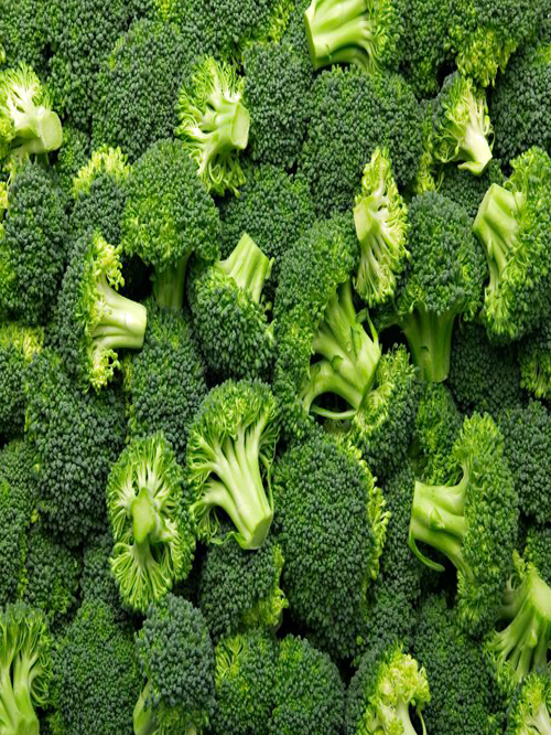 Broccoli-poranbazar-2